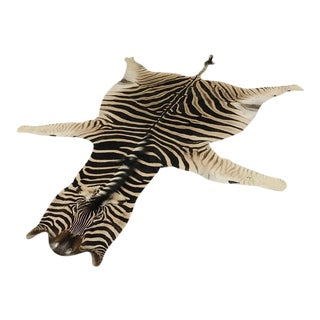 Natural Zebra Hide Rug - 8'6 x 7'9