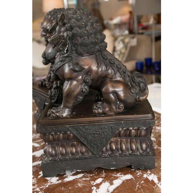 Fine Antique Bronze Foo Lion/ Dog Pair - Image 3 of 10