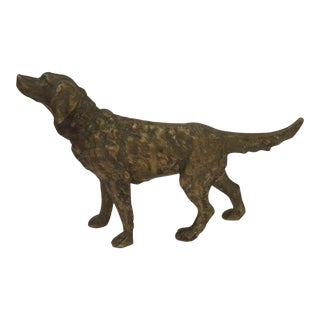 Bronze Retriever Dog