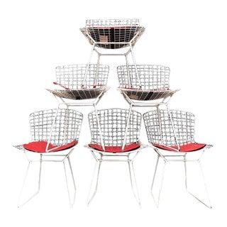 Harry Bertoia Knoll Chairs - Set of 6