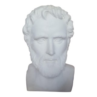 Overscaled Plaster Male Bust
