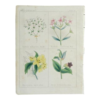1860 Antique Print Plate 8