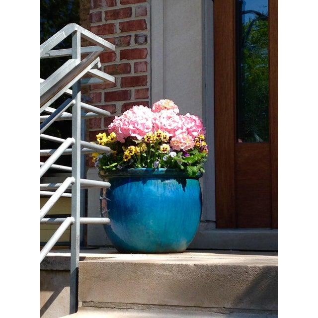 Blue Flower Pot Photograph by Josh Moulton - Image 2 of 2