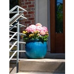 Image of Blue Flower Pot Photograph by Josh Moulton