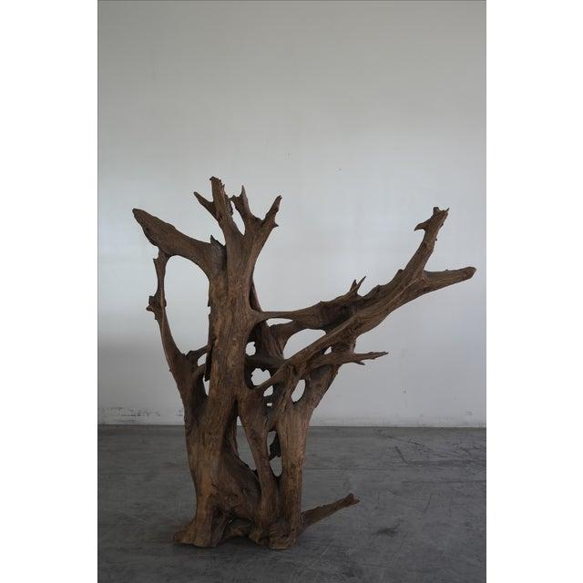 Drift Wood Sculpture - Image 7 of 9
