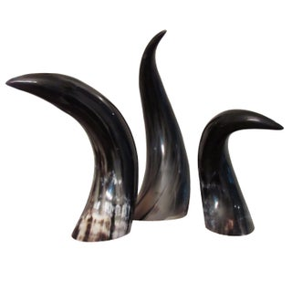 Impressive Horns of Graduated Heights - Set of 3