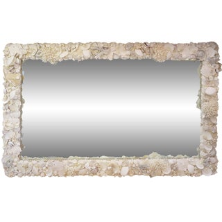 Monumental Coral & Shells Mirror