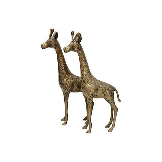 Standing Matched Brass Giraffes - Pair - Image 1 of 6