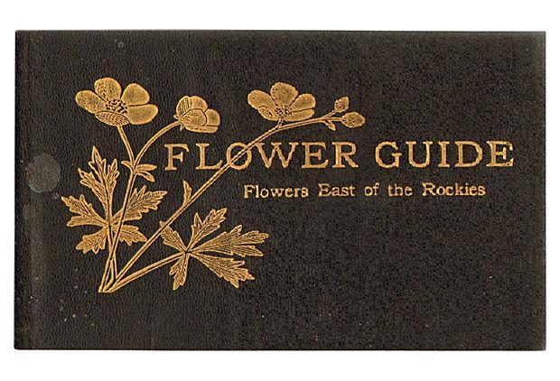 Flower Guide Book Wildflowers East Of The Rockies Chairish