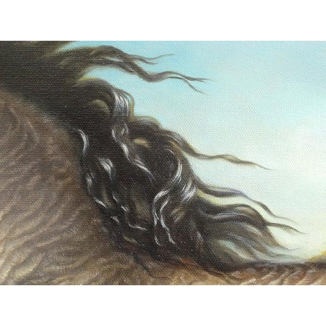 "Ute Simon ""Surprise"" American Bashkir Curly Horse Painting - Image 5 of 9"