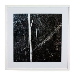 """Sticks"" Photograph Framed in White Wood"