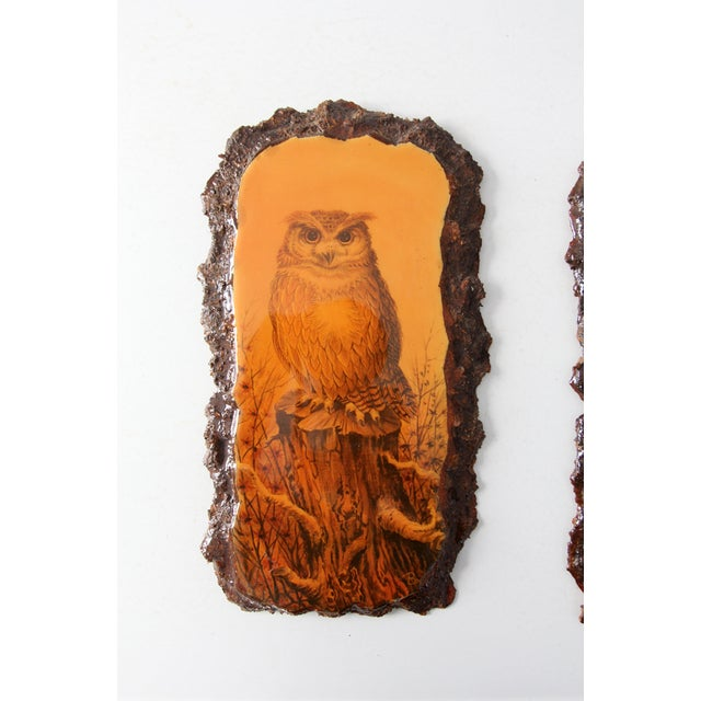 1970's Owl Paintings on Lacquered Wood - Pair - Image 3 of 9
