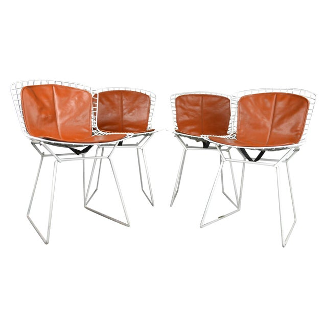 Bertoia for Knoll Vintage White Chairs - Set of 4 - Image 1 of 8