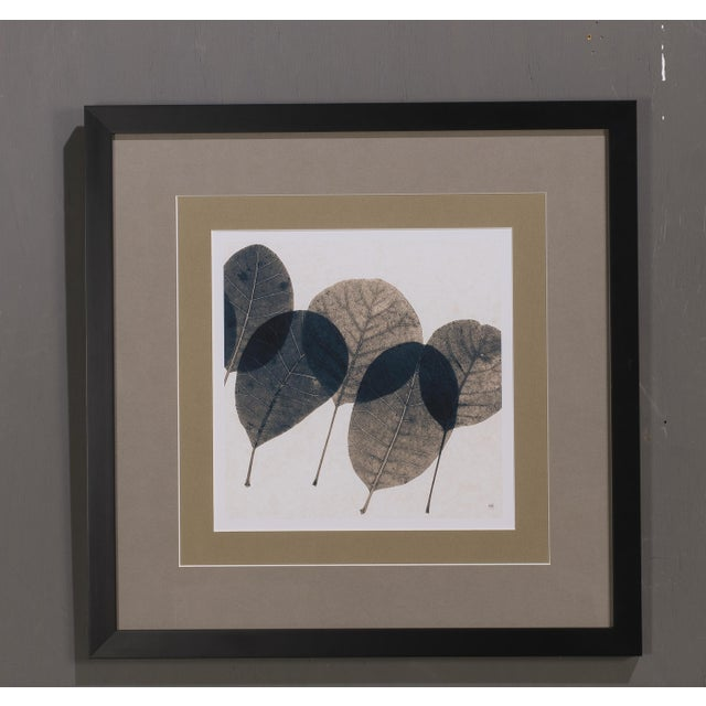 Image of Sarreid LTD Transparent Leaf Giclee Print