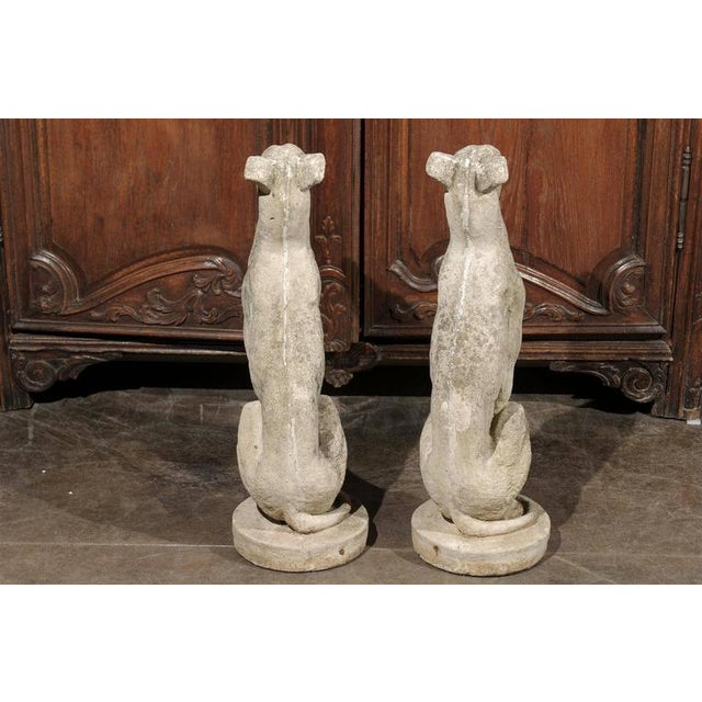 Pair of Vintage Carved Cement Greyhound Sculptures Sitting on Circular Bases - Image 4 of 9