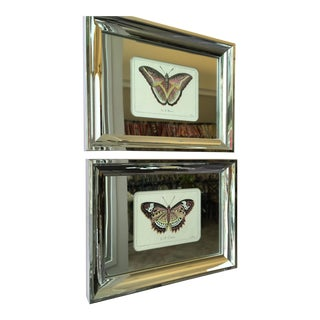 Framed Butterfly Prints - A Pair