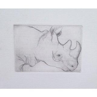 Gray Rhino by Sylvia Roth