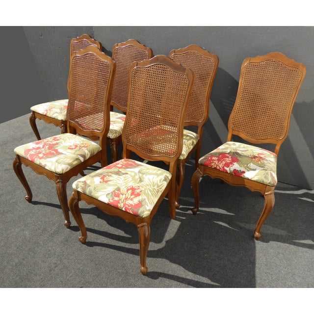 Cane Dining Room Chairs: 6 French Provincial Cane Back Dining Room Chairs