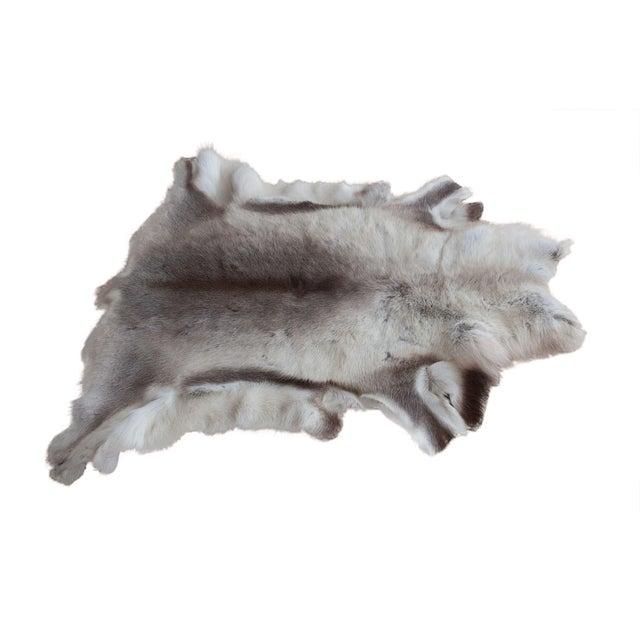 Luxurious Reindeer Fur Throw - Image 1 of 4