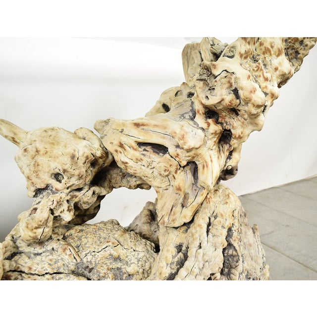 Vintage Tree Root Console Table W/Glass Top - Image 8 of 8
