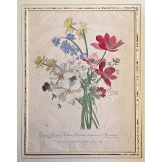 Antique French Floral Botanical Print