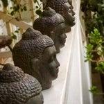 Image of Assorted Buddha Heads - Set of 10