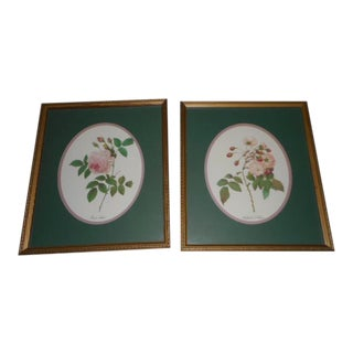 Rose Botanical Print Frame - a Pair