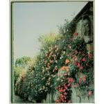 Image of Gardens of the Italian Villas