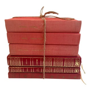 French Literature Books - Set of 6