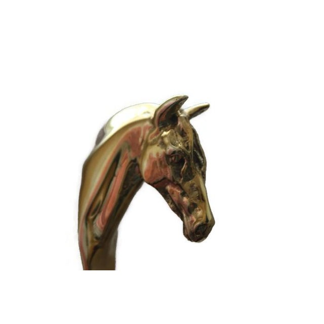 Image of Brass Horse Head Hooks - A Pair