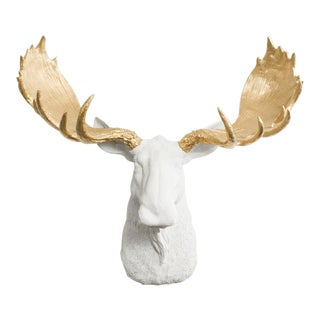 Wall Charmers Moose in White & Gold Antler