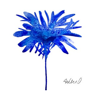 Premium giclee print of botanical blue
