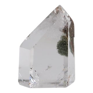 Clear Crystal & Moss Self-Standing Point