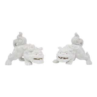 Blanc De Chine Foo Dogs - A Pair