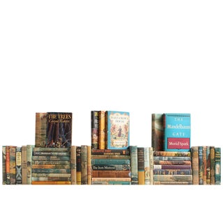 Vintage Dustjacket Book Wall - Set of 50