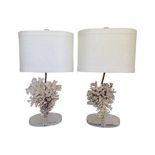 Natural Ocean Coral Lamps - A Pair