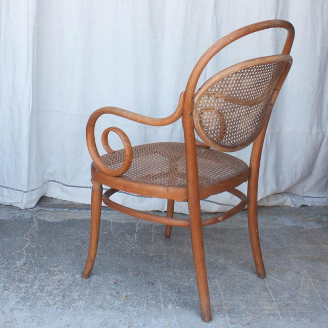Vintage Thonet Arm Chair - Image 5 of 11