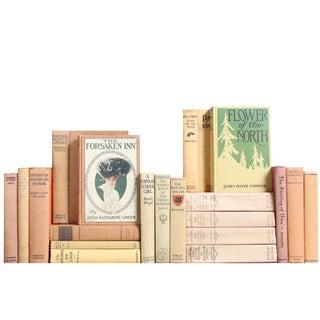 Antique Pastel Mix Books - Set of 20