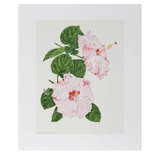 Marion Sheehan - Hibiscus Lithograph