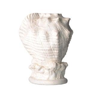 Elite Plaster Seashell Table Sculpture