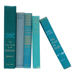 Coastal Turquoise Vintage Book Collection - Set of 5