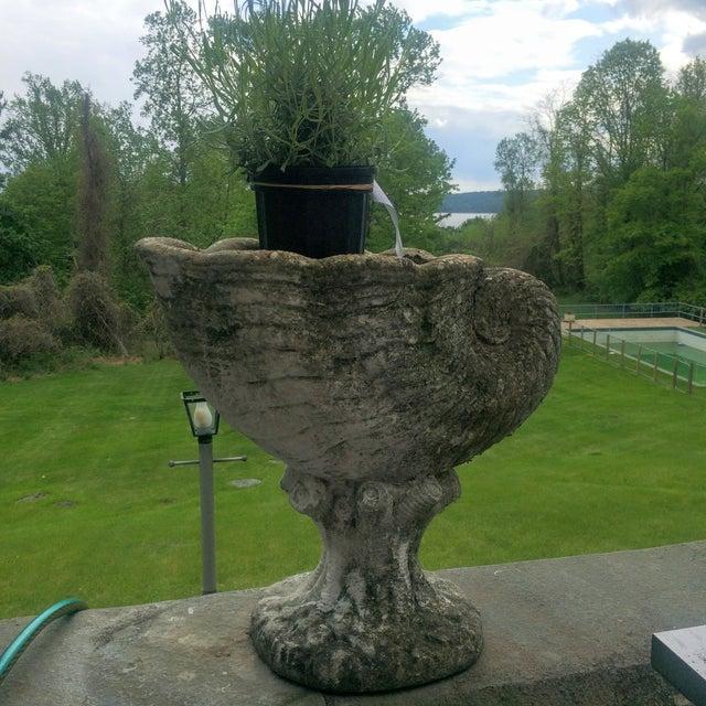 Large Antique Cornucopia Shaped Garden Planter - Image 5 of 10