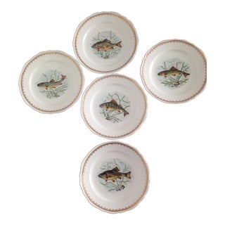 Hand Painted Couleuvre Fish Plates - Set of 5