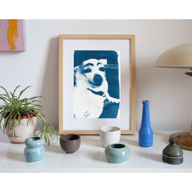 Cyanotype Print- Dog With Eyebrows Meme - Image 4 of 4