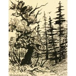 Image of Vintage 1930s Forest Pen and Ink Drawing