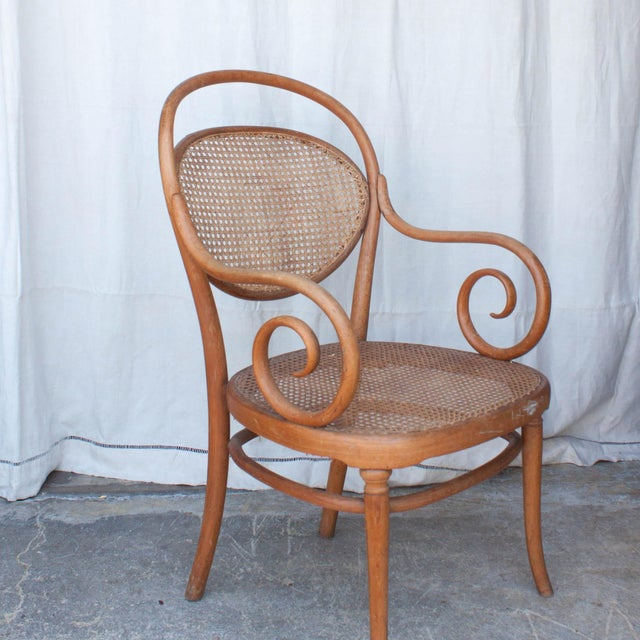 Image of Vintage Thonet Arm Chair