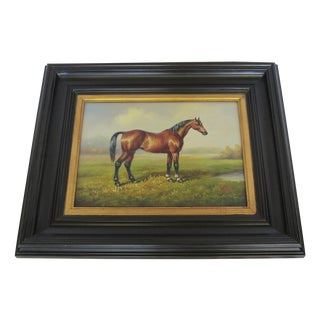 Brown Bay Horse Portrait by Boyle