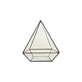 Triangular Terrarium