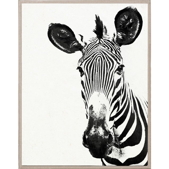 Tylinek Zebra Print in Floating Lucite Frame - Image 1 of 2