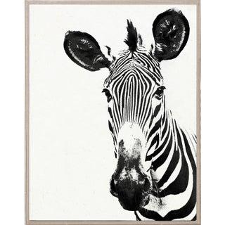 Tylinek Zebra Print in Floating Lucite Frame